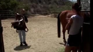 Follada en un establo de caballos